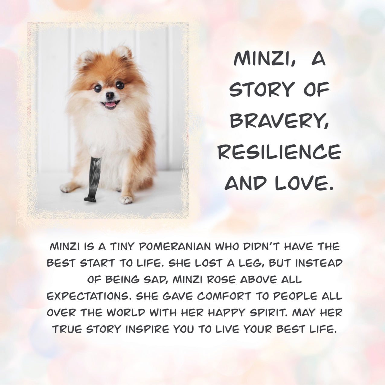 Children's Book - MISSY MINZI THE MIGHTY