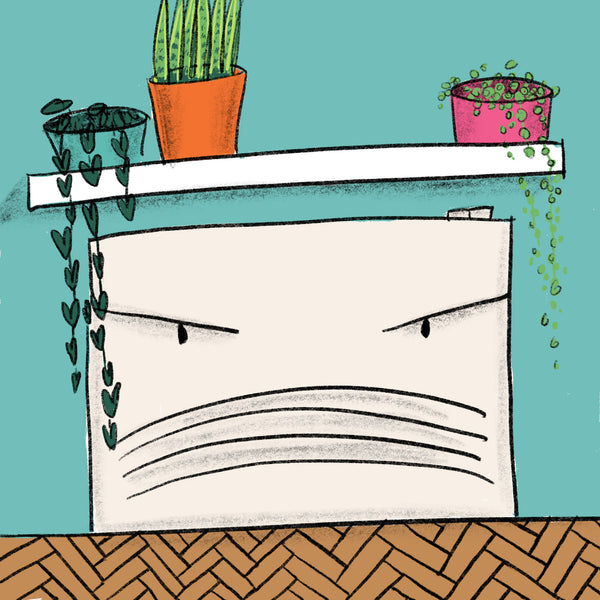 Be careful of heat sources around your houseplants