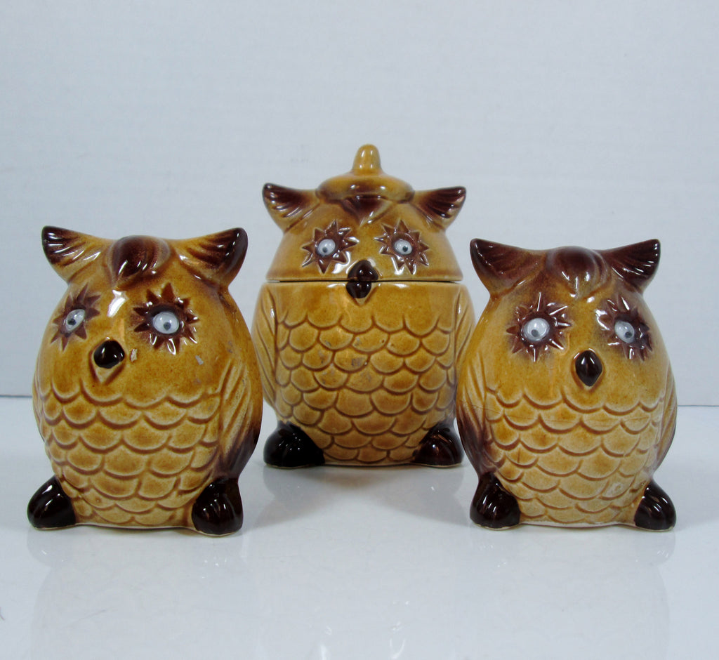 Vintage Owl Salt and Pepper set google eyes