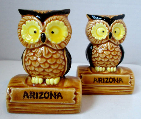 Cute Vintage Owl Salt and Pepper Shakers Souvenir Arizona