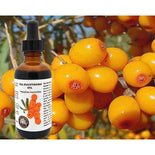 100% Pure Sea Buckthorn Fruit, Berry Oil (Cold