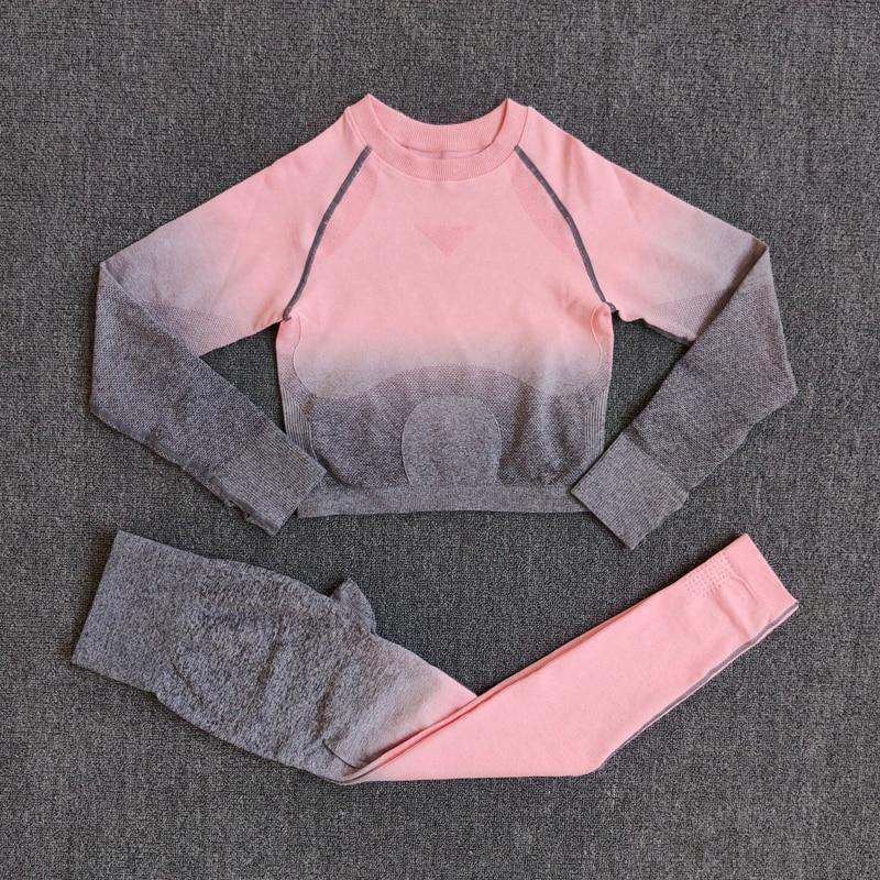 Seamless Crop Top & High Waisted Legging Set