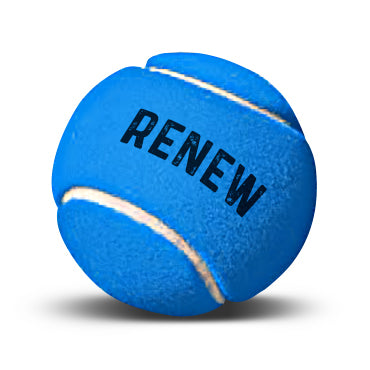 Renew Membership - Family (2 Adults + 1 or more Juniors)