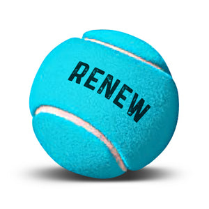 Renew Membership - Family (1 Adult + 2 or more Juniors)