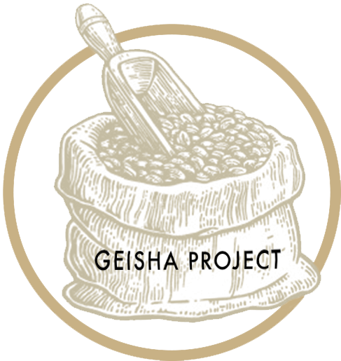 Geisha project