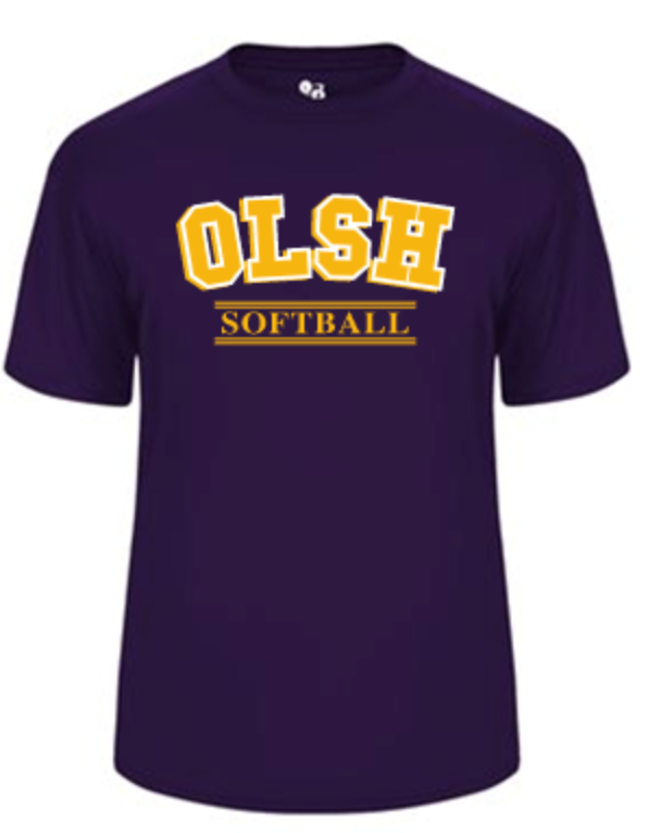 OLSH SOFTBALL YOUTH & ADULT PERFORMANCE SOFTLOCK SHORT SLEEVE TEE - PURPLE OR GRAPHITE