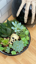 Load image into Gallery viewer, 10/18/20 6:00 PM Skull Hand Succulent Garden