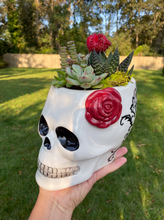 Load image into Gallery viewer, Skull Terrarium