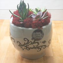 Load image into Gallery viewer, 10/21/2020 7:30 PM  Skull Terrarium Succulents or DIY at Home