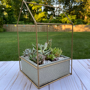 Bronze House Terrarium