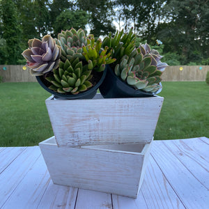 Simple White Rustic Container