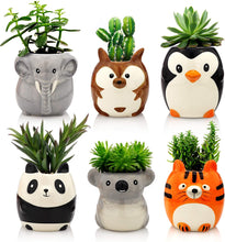 Load image into Gallery viewer, Plant Buddies (Safari Animals) - 6 Pack with succulents! SAVE $