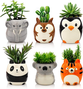 Plant Buddies (Safari Animals) - 6 Pack with succulents! SAVE $