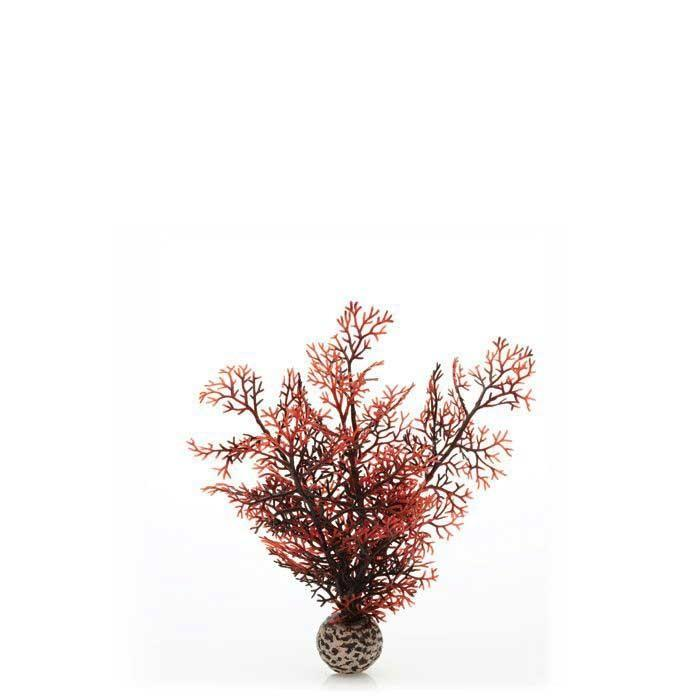 biOrb Sea Fan S Crimson