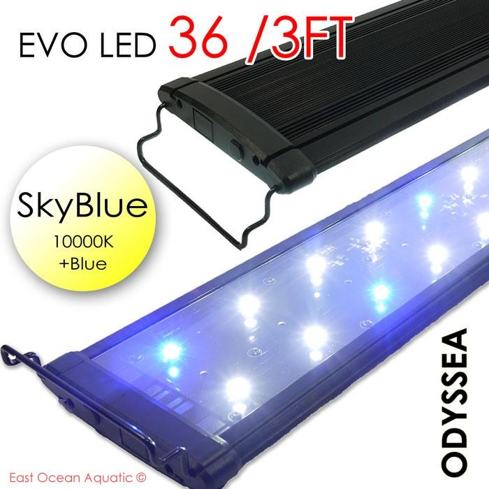"ODYSSEA EVO Led 36"" 72W Skyblue (10000K+blue)"