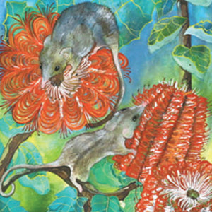 Gift Card - Honey Possums