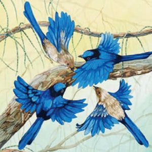 Gift Card - Acrobats in Blue