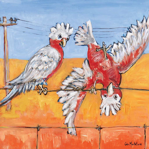 Greeting Card - Who's A Galah