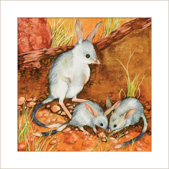 Greeting Card - Bilbies