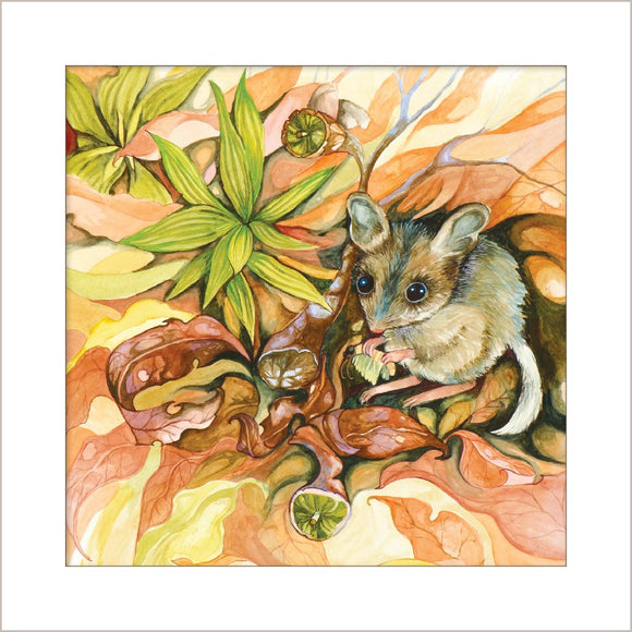 Greeting Card - Fat-tailed Dunnart