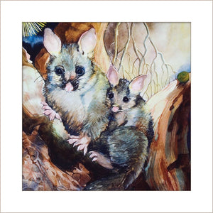 Greeting Card - Possums Hiding