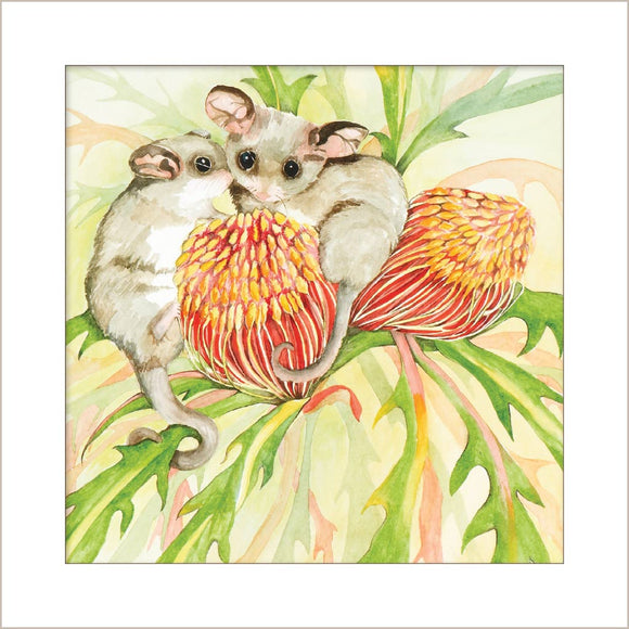Greeting Card - Pair of Pygmy Possums
