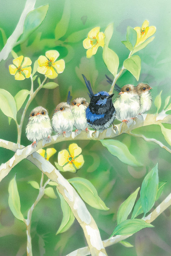 Greeting Card - Splendid Fairy-wren