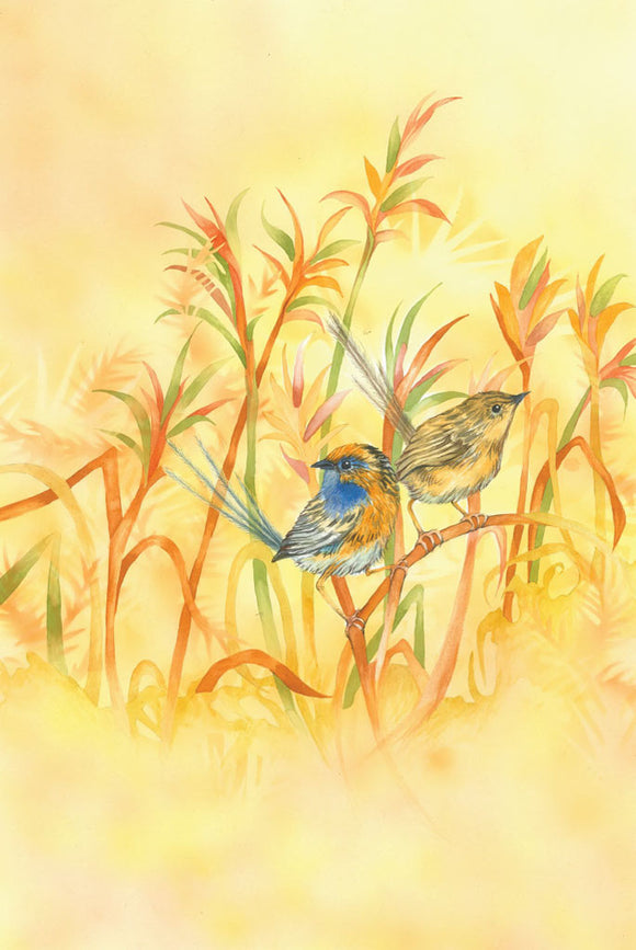 Greeting Card - Southern Emu-wren
