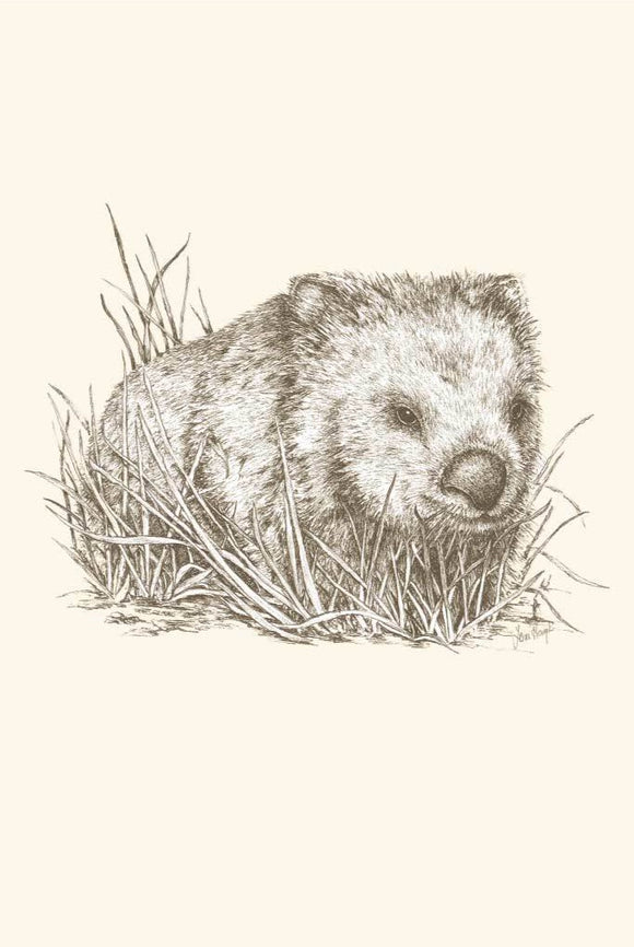 Greeting Card - Wombat