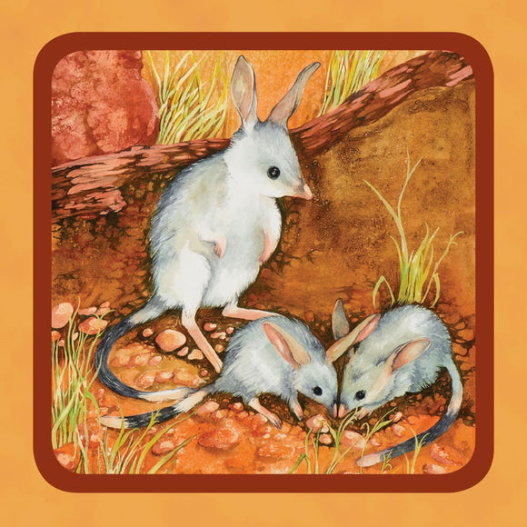 Square Tin - Bilby