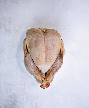 Pre-Order - Whole Heritage Turkey