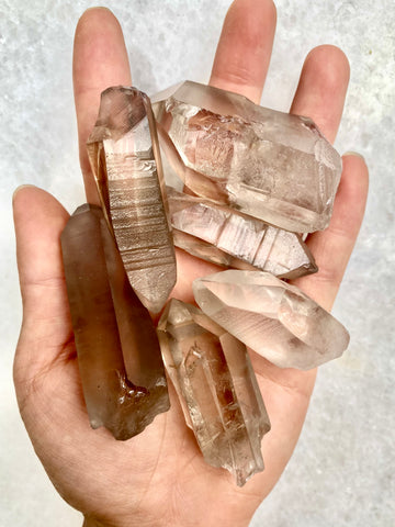 Lemurian Smokey Quartz Rough Points