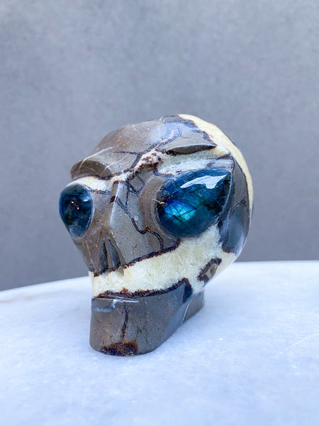Septarian Dragon Alien Head Carving
