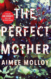 The Perfect Mother - Aimee Molloy