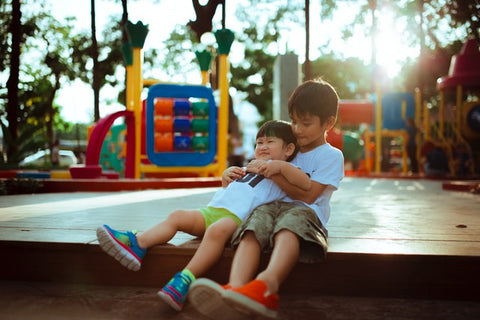 Brothers enjoying each other's company at the playground