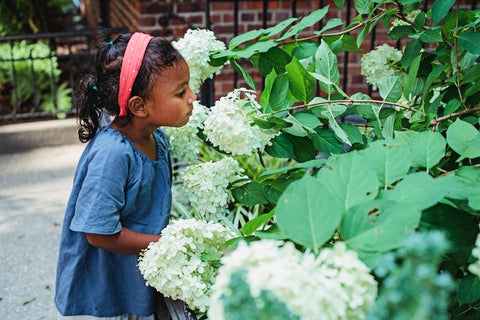 child smelling flowers outdoors