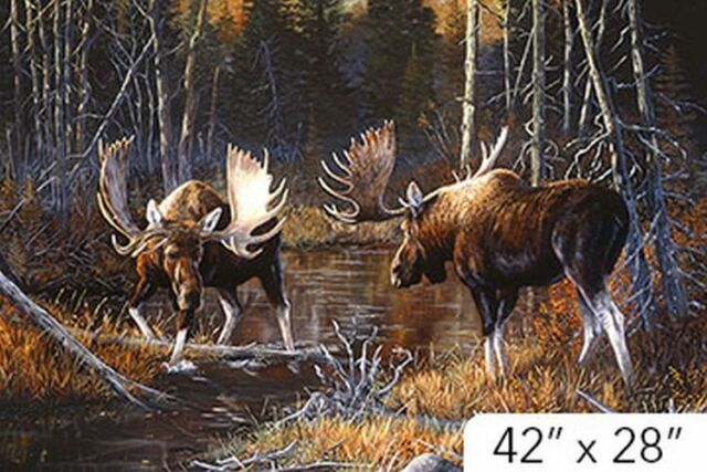 Majestic Moose panel