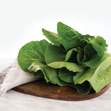 Load image into Gallery viewer, Romaine Lettuce