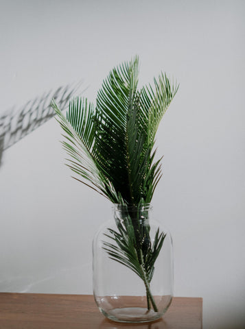 Photo of Palm leaves in a glass jar.
