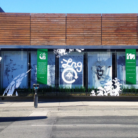 40ft LRG window display