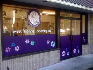 """Sweet Face Dog Grooming"" project completed."