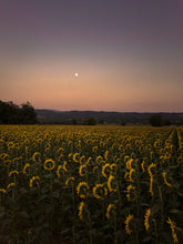 Load image into Gallery viewer, Custom Frame Sunflower and Moonrise, Lacoste, France, 2015