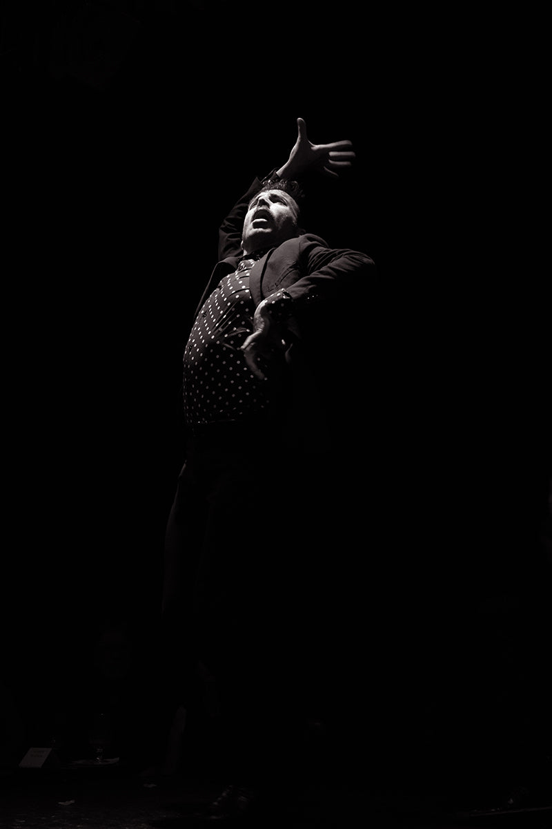 Flamenco, Madrid, Spain, 2018