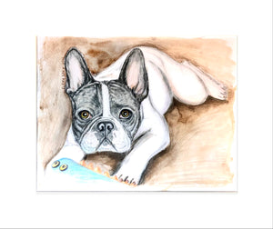 French Bulldog Dakota 11x14 paper pencil drawing, watercolor, paper original, mat