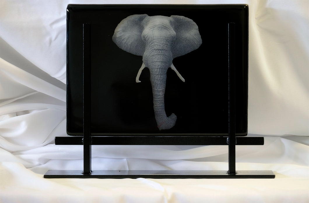 Eight-Ton Pachyderm, 12 x 10 x 0.4 fused glass