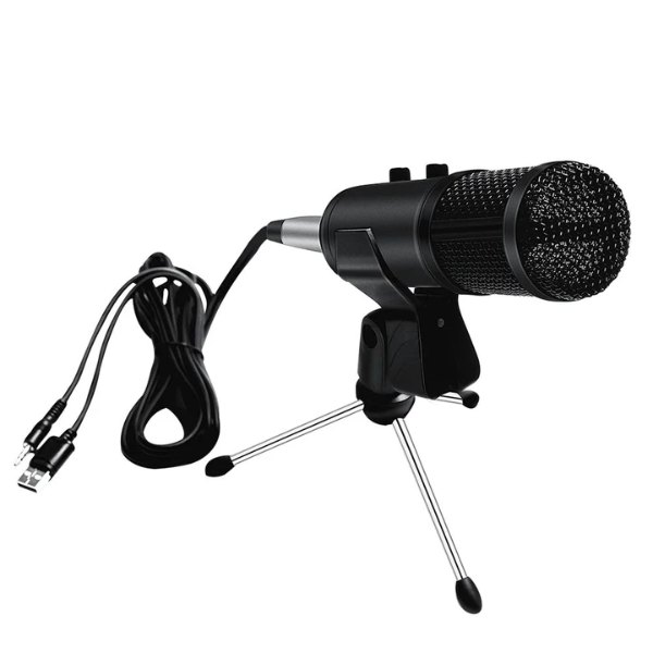 Professional bm 800 Condenser Microphone and Sound Card