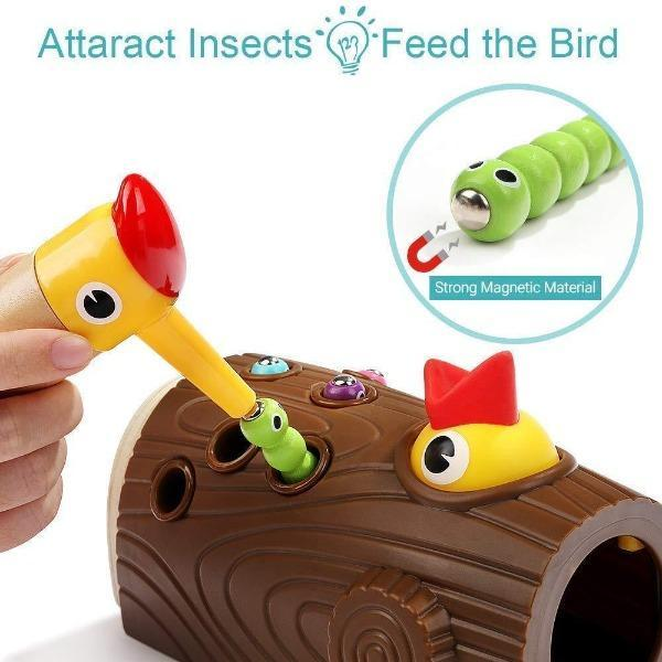 Magnetic Bird Toys