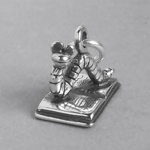 Bookworm on Book Charm Sterling Silver Front