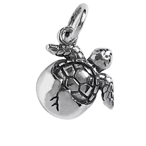 Turtle Hatchling Charm Sterling Silver