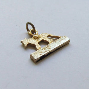 Vintage Tasmania Souvenir Charm Gold tone metal with black paint